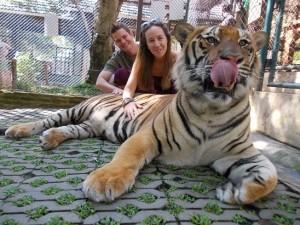 Ryan Biddulph And Kelli With Tigers