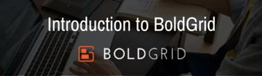 boldgrid guide